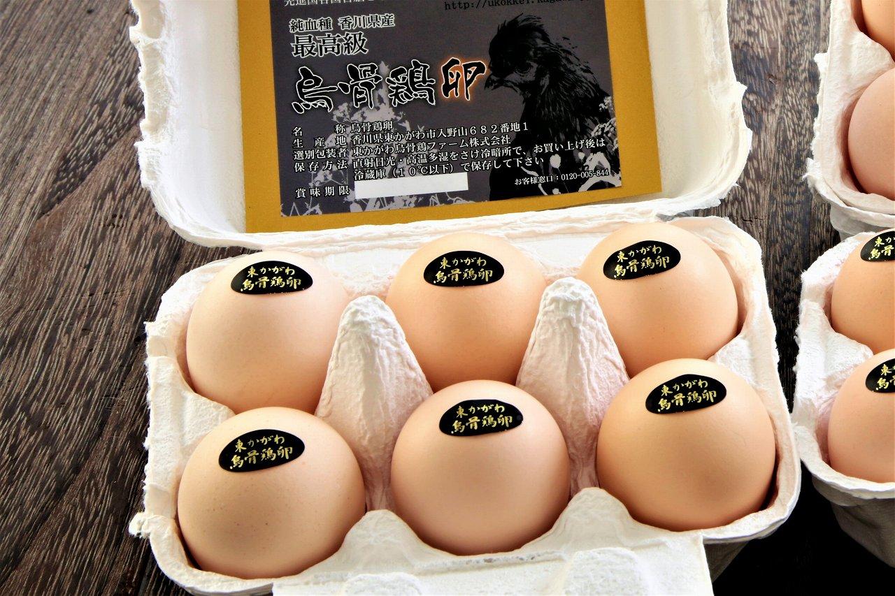 烏骨鶏卵18個セット